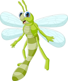 Cartoon cute dragonfly isolated on white background
