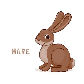 A cartoon cute hare