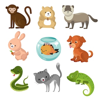 Cartoon cute home pets vector collection