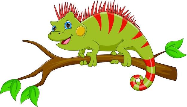 Cartoon cute iguana on white background