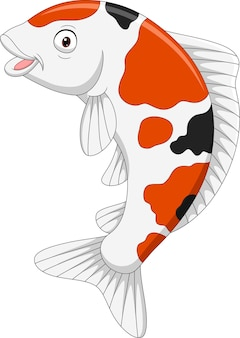 Cartoon cute koi fish on white