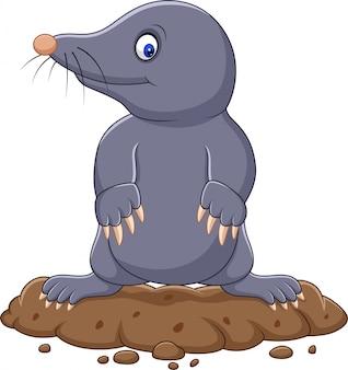 Cartoon cute mole