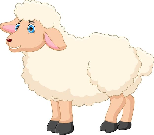 白い背景で隔離の漫画かわいい羊