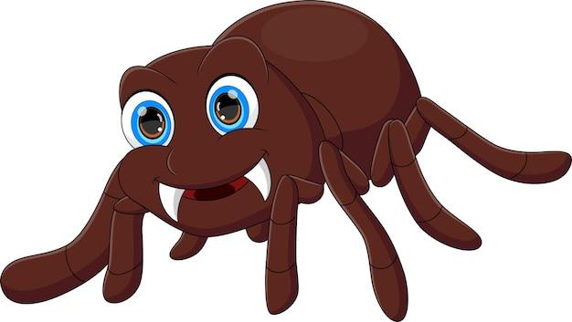 Cartoon cute tarantula on white background