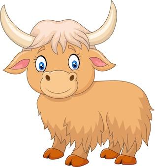 Cartoon cute yak isolated on white background