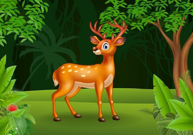 Cartoon deer in the jungle