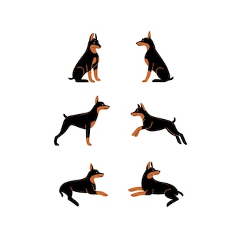 漫画の犬のアイコンセットドーベルマンのさまざまなポーズ
