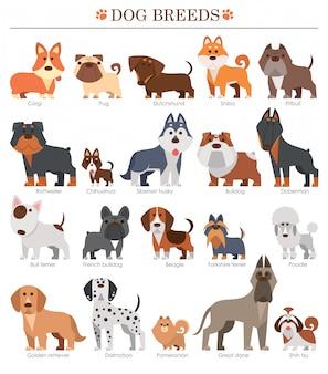 漫画の犬の品種セット。かわいい犬。