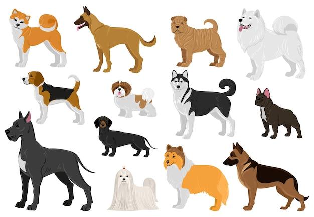 漫画の犬のさまざまな品種、面白い国内の子犬のペット。ハスキー、ビーグル、グレートデーン、フレンチブルドッグ、マルタの犬のベクトルイラストセット。かわいい異なる品種の犬