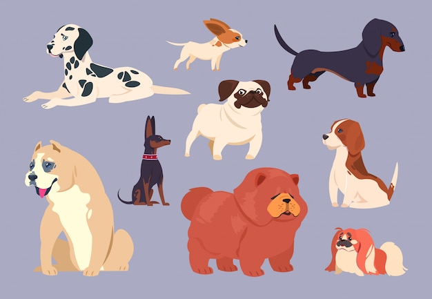 Cartoon dogs. puppy pet different breeds. chow chow, dachshund and dalmatian, pit bull and pekingese, pug and beagle vector collection