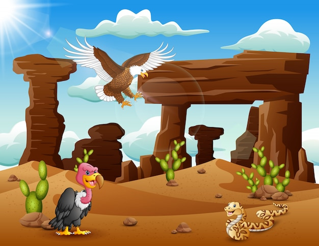 Cartoon eagle bird, turkey and snake living in the desert