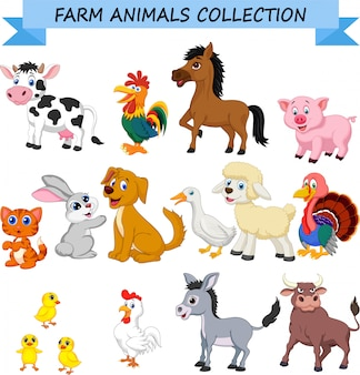 Cartoon farm animals collection