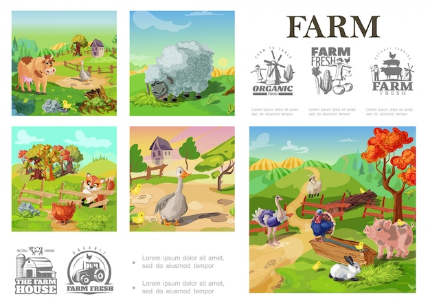 Cartoon farm animals colorful composition with sheep pig cow turkey rooster goose rabbit goat goose chicken on rural landscape and farming emblems