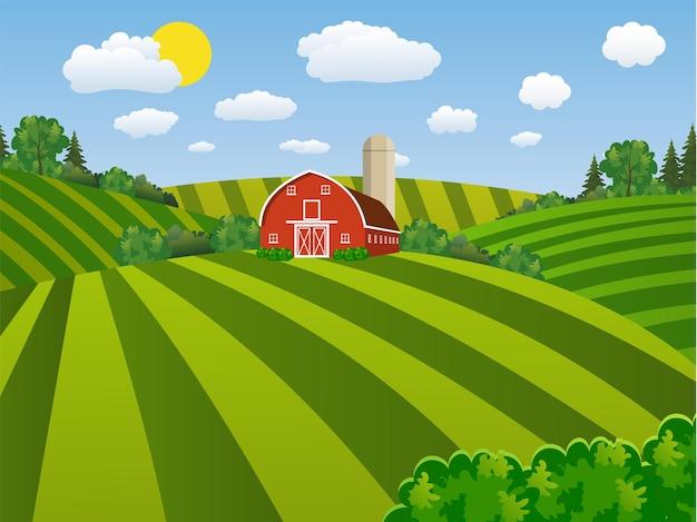 漫画の農地の緑の種まき畑、緑の農民の畑の赤い納屋、縞模様の大規模な畑の農業、農場の平らな風景。