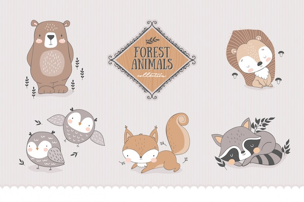 Cartoon forest characters collection.