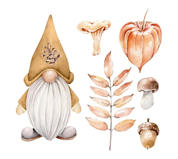 Cartoon forest gnome with forest plants