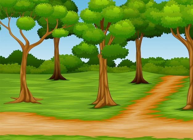Cartoon of forest scene with dirt road