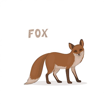 A cartoon fox, isolated. animal alphabet.