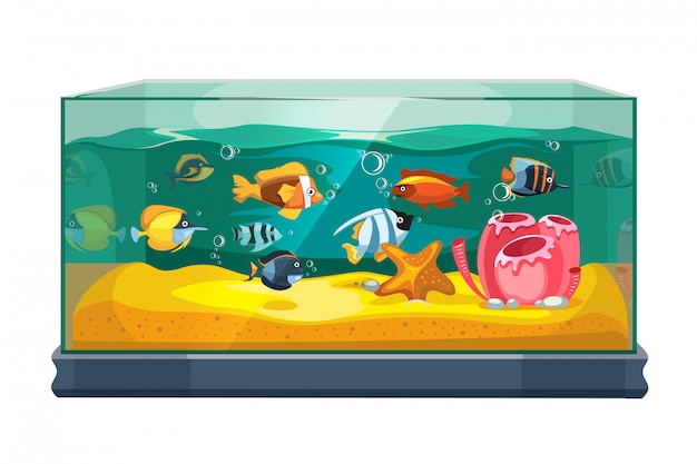 Cartoon freshwater fishes in tank aquarium