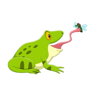 Cartoon frog catching a fly