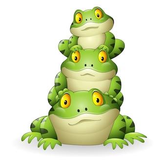 Cartoon frog stacked isolated on white background
