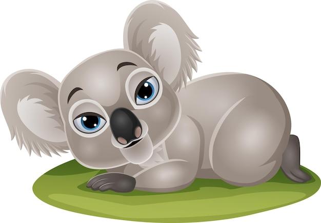 Cartoon funny baby koala lying down in the grass