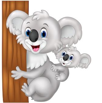 Cartoon funny baby koala on mother's back embracing tree
