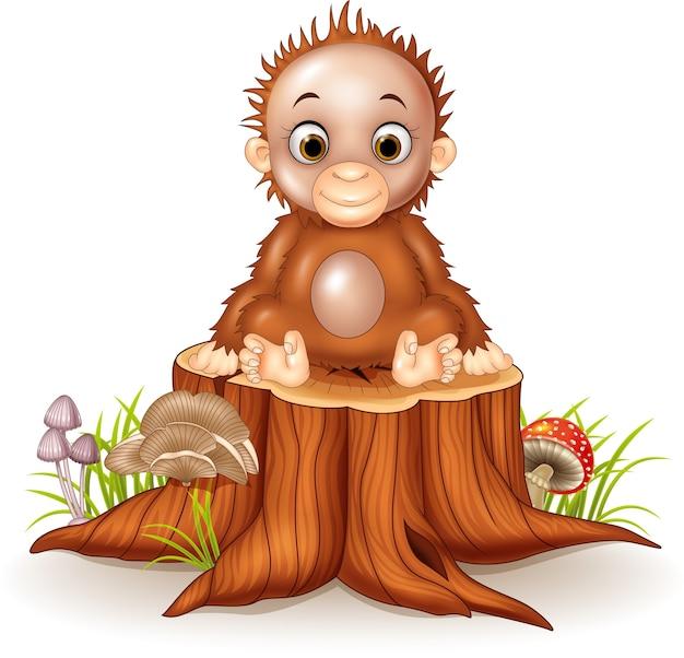 Cartoon funny baby orangutan on tree stump