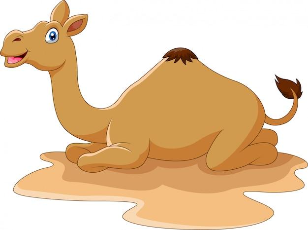 Мультфильм смешной верблюд сидит в пустыне