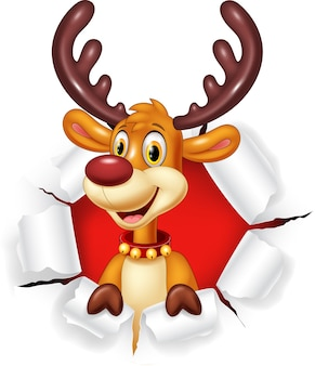 Cartoon funny deer with blank sign