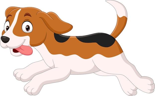 白い背景で隔離の漫画面白い犬の実行