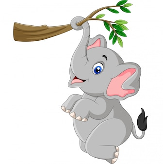 Cartoon funny elephant playing on a tree branch