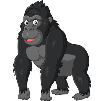 Cartoon funny gorilla on white background