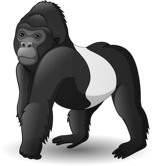 Cartoon funny gorilla