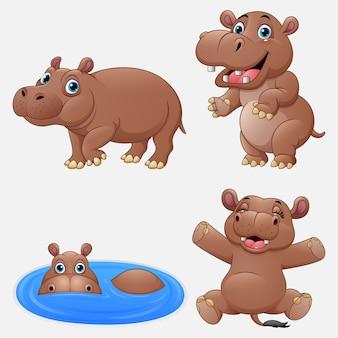 Cartoon funny hippos collection set