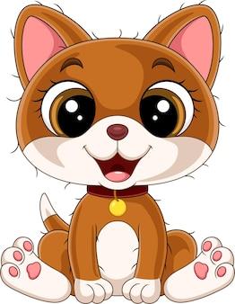 레드 칼라 앉아 만화 재미 새끼 고양이