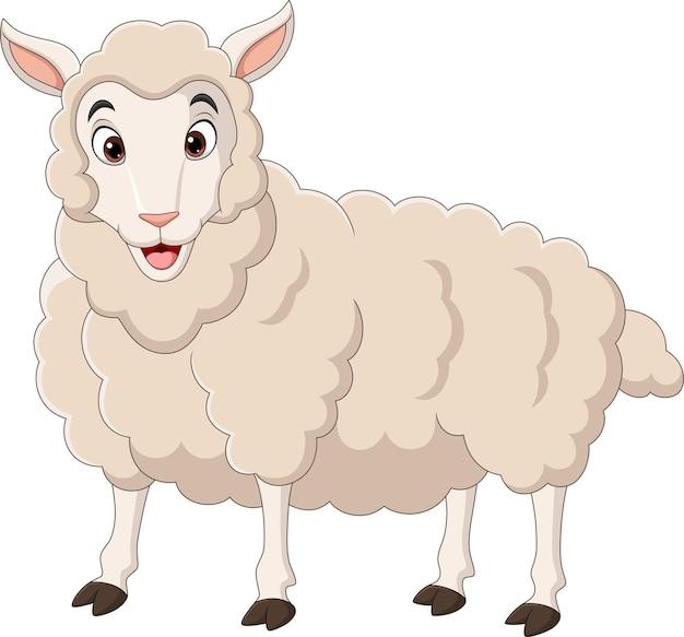 白い背景の上の漫画面白い子羊
