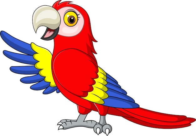 Cartoon funny macaw presenting on white