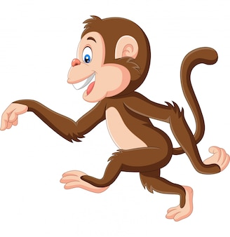 Cartoon funny monkey walking on white background