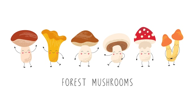 Cartoon funny mushrooms, cute characters. chanterelles, amanita, champignons, porcini, boletus, honey agarics.
