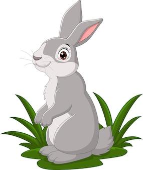 草の中の漫画面白いウサギ