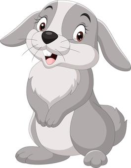 白い背景で隔離の漫画面白いウサギ