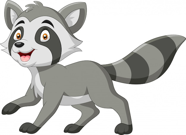 Cartoon funny raccoon a smile