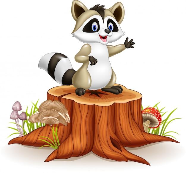 Cartoon funny raccoon waving hand on tree stump
