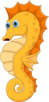 Cartoon funny seahorse on white background