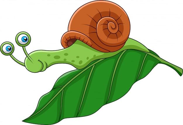 Cartoon funny snail on a leaf