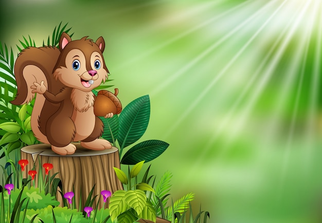 Cartoon funny squirrel holding pine cone and standing on tree stump with green plants