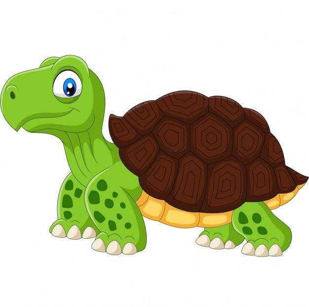 Мультяшная смешная черепаха на белом фоне