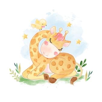 Cartoon giraffe sleeping with yellow little bird illustration