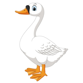 Cartoon goose on white background